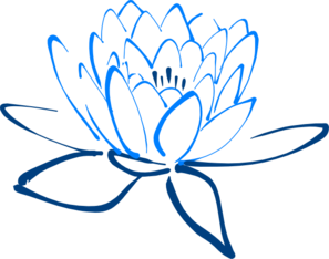 Blue Lotus Healing Arts San Diego VRT Vibrational Raindrop Technique